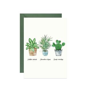 kartka z życzeniami z roślinami doniczkowymi - kalatheą, palmą i opuncją